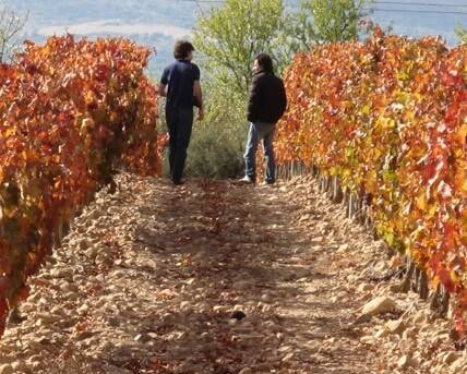 The Santos Brothers in the Aldonia vineyards
