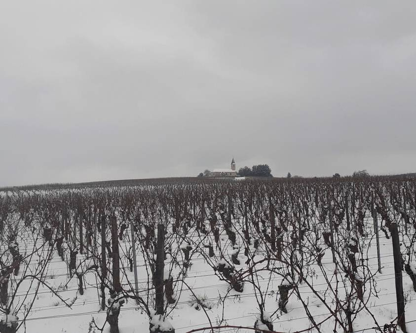 Winter at Domaine de la Verpaille
