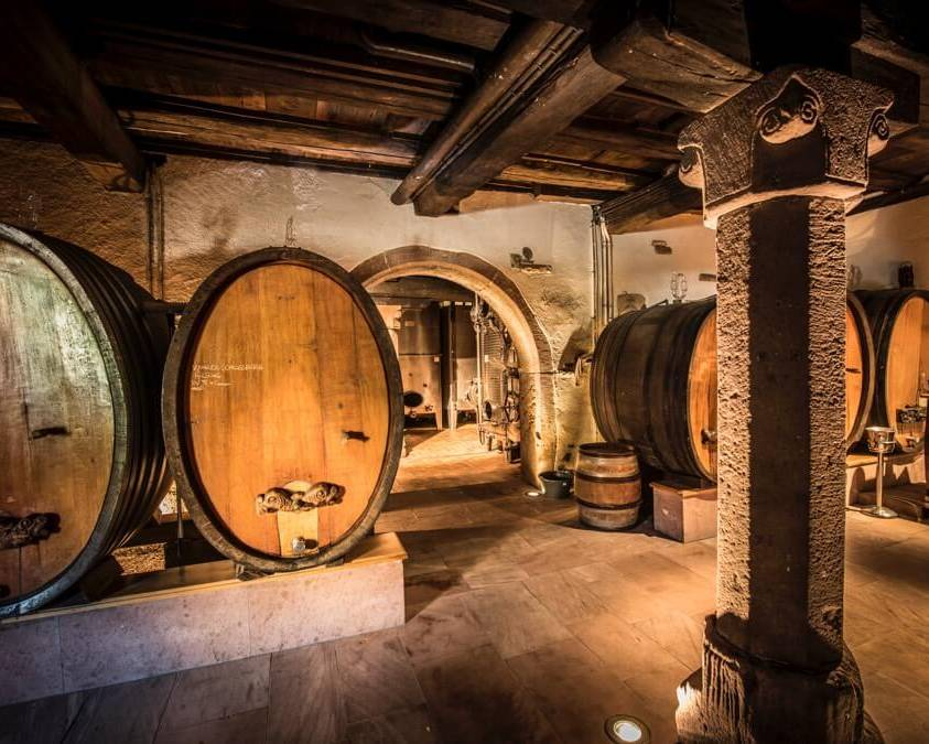 The Cellar at Domaine Meyer Fonne