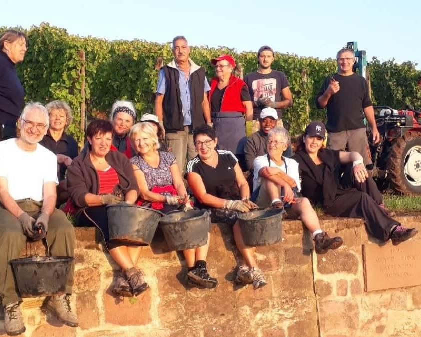Harvest at Meyer Fonne