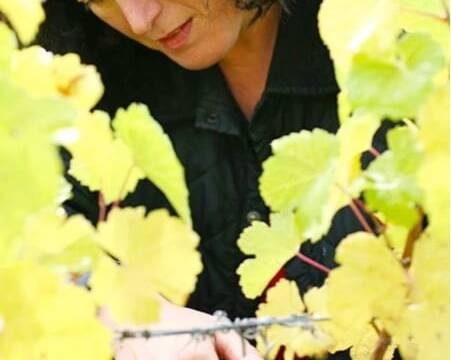 Sybille Kuntz in the Vineyards
